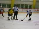 Eishockey_13