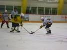 Eishockey_14