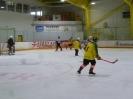 Eishockey_16