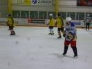 Eishockey_17