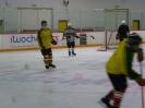 Eishockey_18