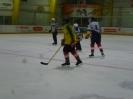 Eishockey_19