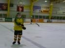 Eishockey_20