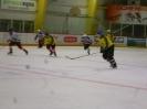 Eishockey_22