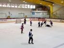 Eishockey vs IFM_10