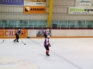 Eishockey vs IFM_15
