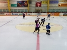Eishockey vs. IFM (01.04.2017)