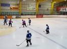 Eishockey vs IFM_4