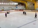 Eishockey vs IFM_5