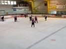 Eishockey vs IFM_7