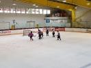 Eishockey vs IFM_8